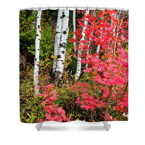 Uinta Colors Shower Curtain