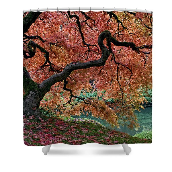 Under Fall's Cover Shower Curtain