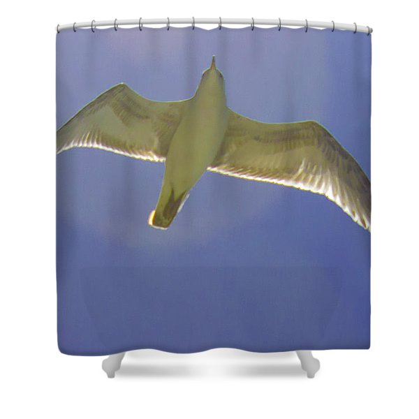 Under His Wings IIi Shower Curtain