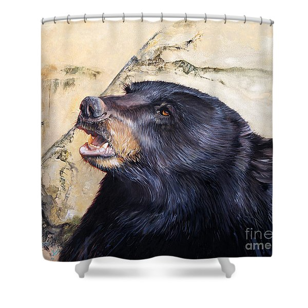 Under The All Sky Shower Curtain