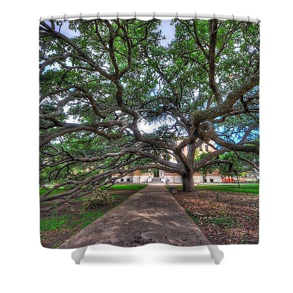 Under The Century Tree Shower Curtain