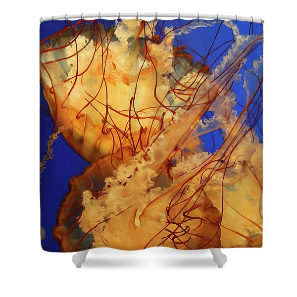 Underwater Friends - Jelly Fish By Diana Sainz Shower Curtain