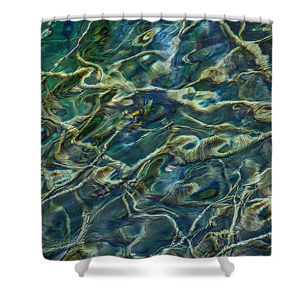 Underwater Roots Shower Curtain