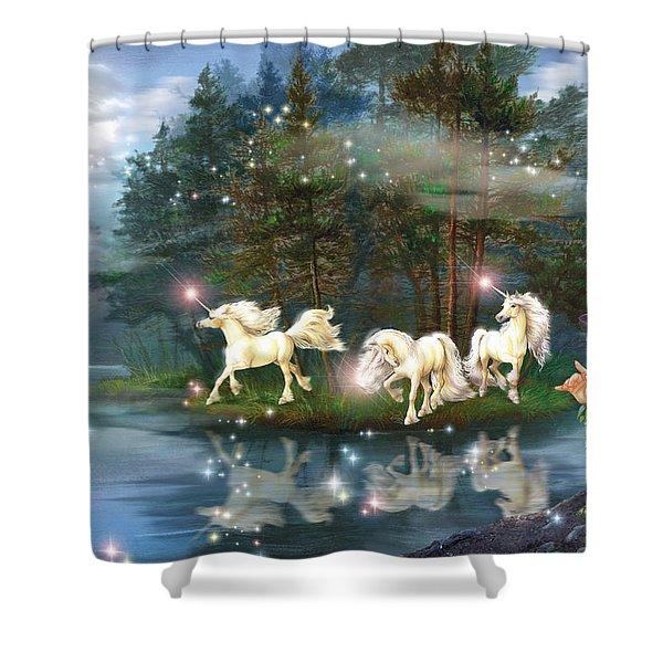 Unicorn Wizard Pool Shower Curtain