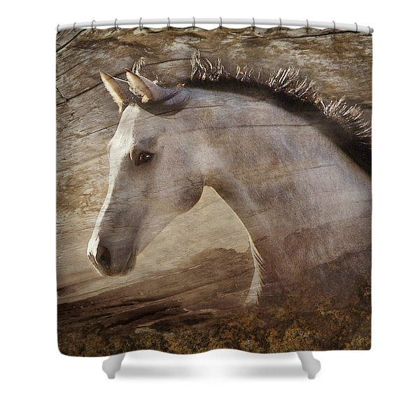 Shower Curtain featuring the photograph UNO by Melinda Hughes-Berland