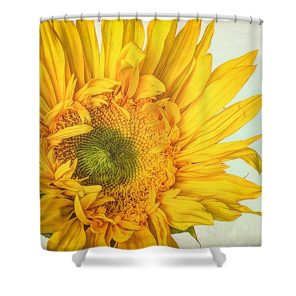 Unrivaled Shower Curtain