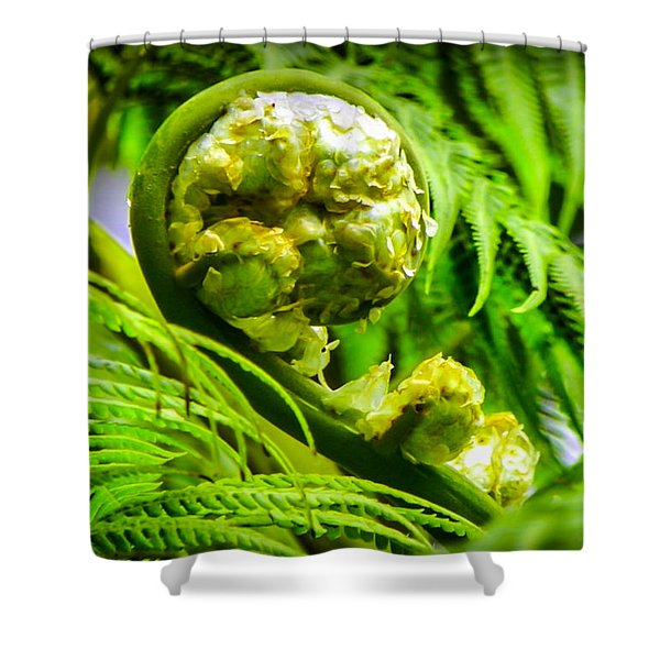 Unveiling Life Shower Curtain