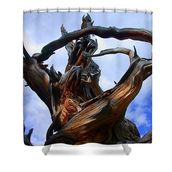 Uprooted Beauty Shower Curtain