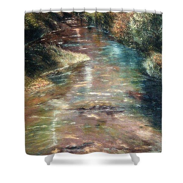 Upstream Shower Curtain