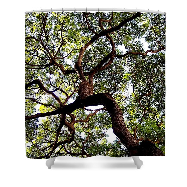 Veins Of Life Shower Curtain