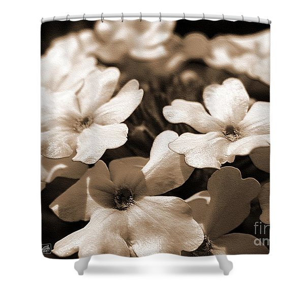 Verbena Named White Hail Shower Curtain
