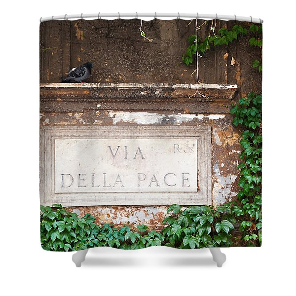 Via Della Pace Shower Curtain