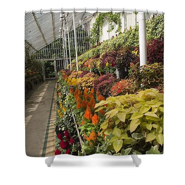 Vibrant Life Palm House Ireland Shower Curtain