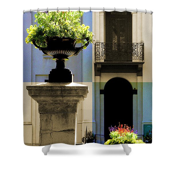Victorian House Flowers Shower Curtain