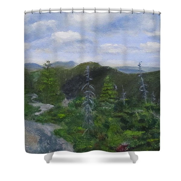 View From Noon Peak Shower Curtain