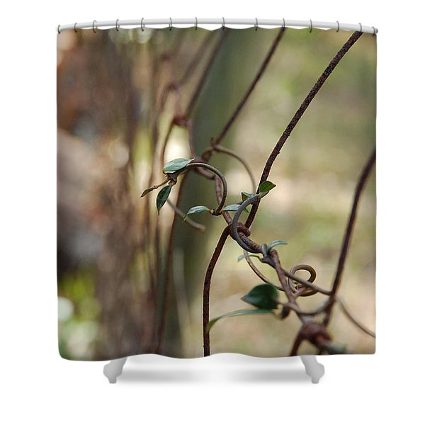 Vine On Rusted Fence Shower Curtain
