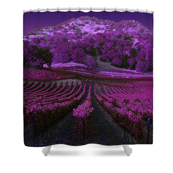 Vineyard 41 Shower Curtain
