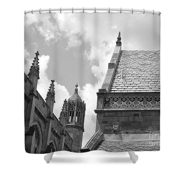 Vintage Ornate Architecture Shower Curtain