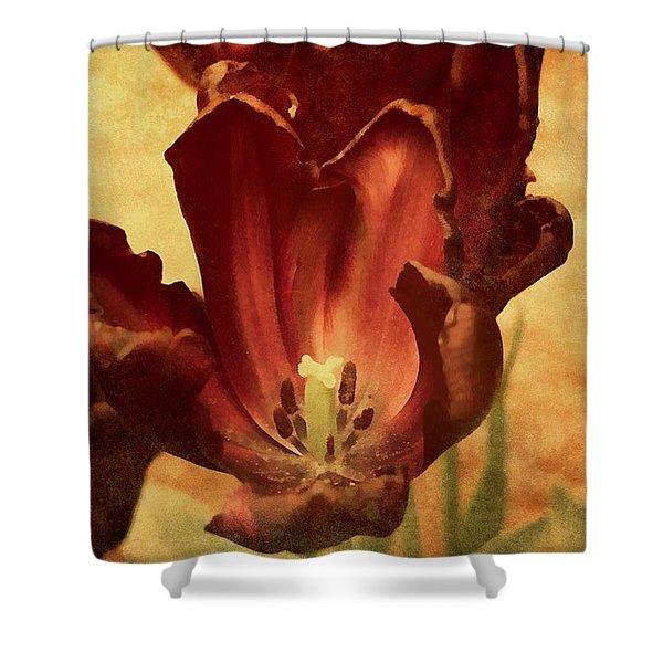 Vintage Tulips Shower Curtain