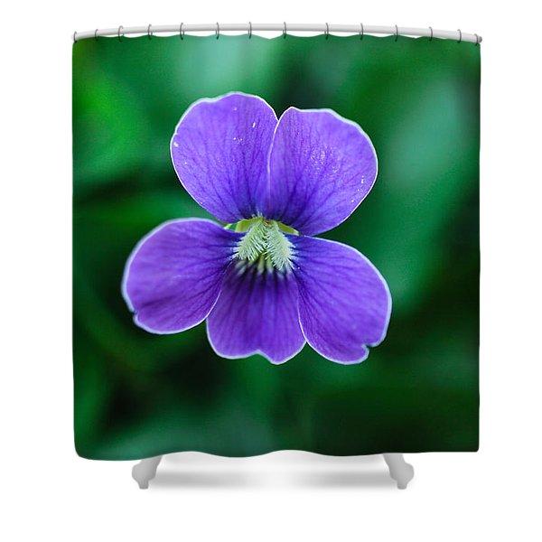 Violet Splendor Shower Curtain