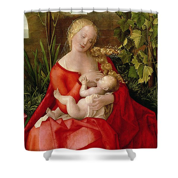 Virgin And Child Madonna With The Iris, 1508 Shower Curtain