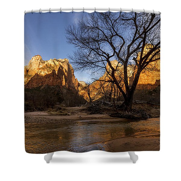 Virgin Reflection Shower Curtain