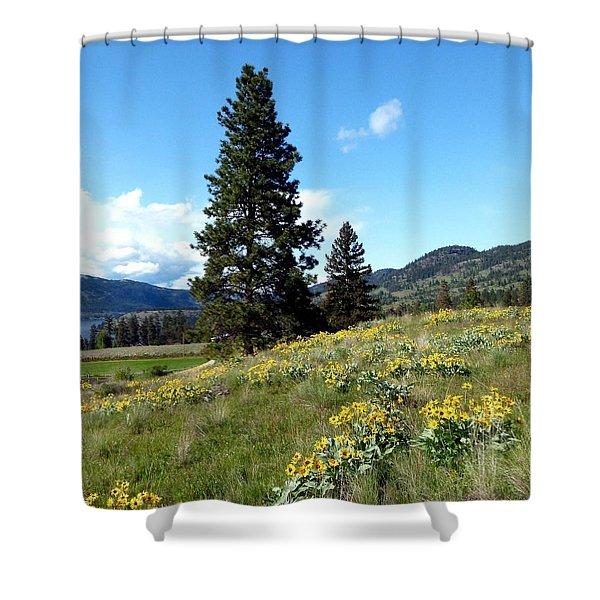 Vista 23 Shower Curtain