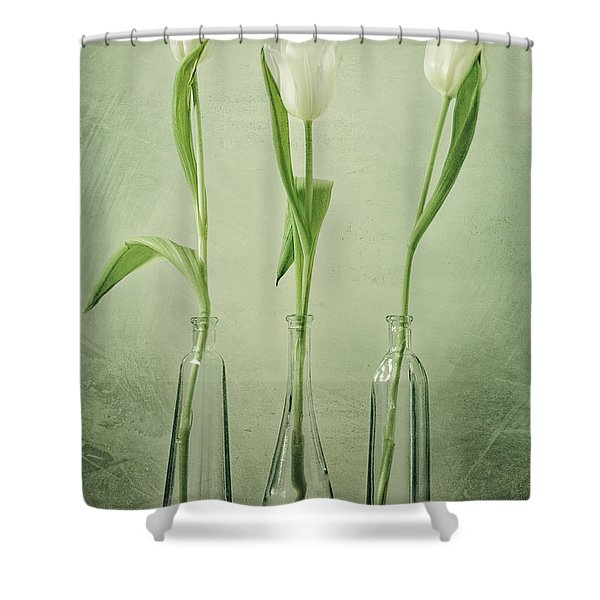 Waiting For Spring Shower Curtain