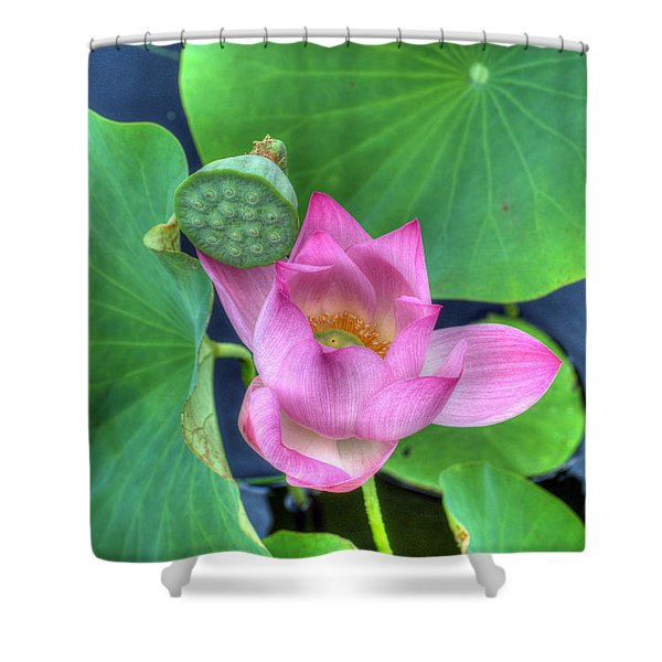 Water Flower Shower Curtain