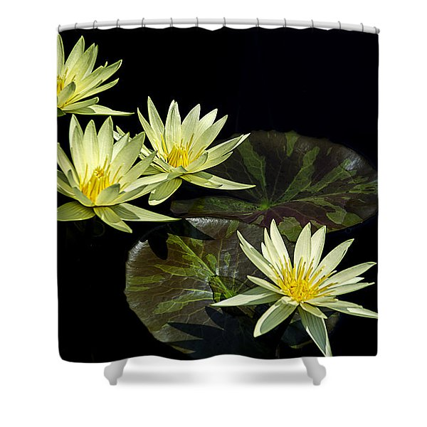 Water Lilies In Yellow Shower Curtain