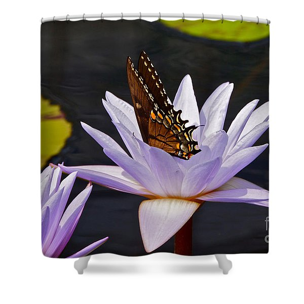 Water Lily And Swallowtail Butterfly Shower Curtain