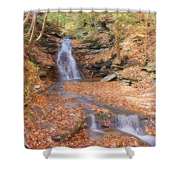 Waterfall In The Fall Shower Curtain
