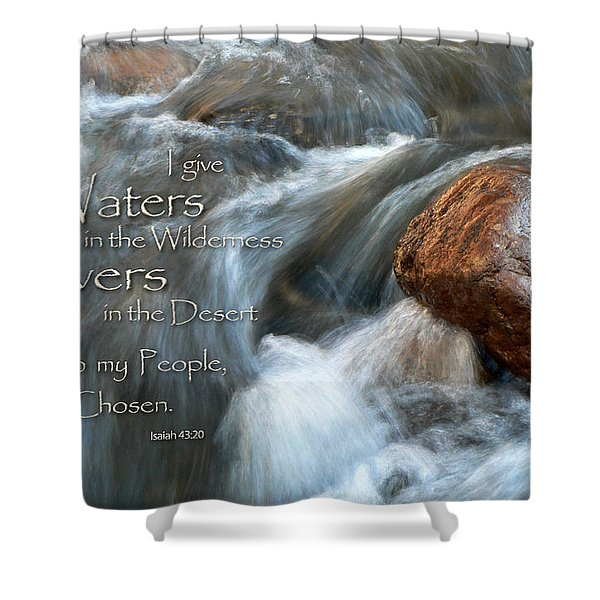 Waters In The Wilderness Shower Curtain