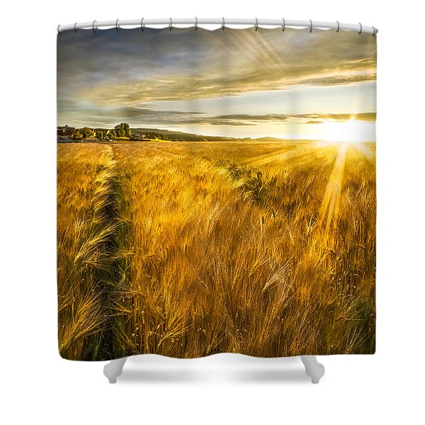 Waves Of Grain Shower Curtain
