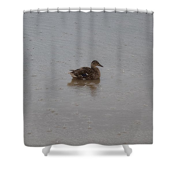 Shower Curtain featuring the photograph Wet Duck by Scott Lyons
