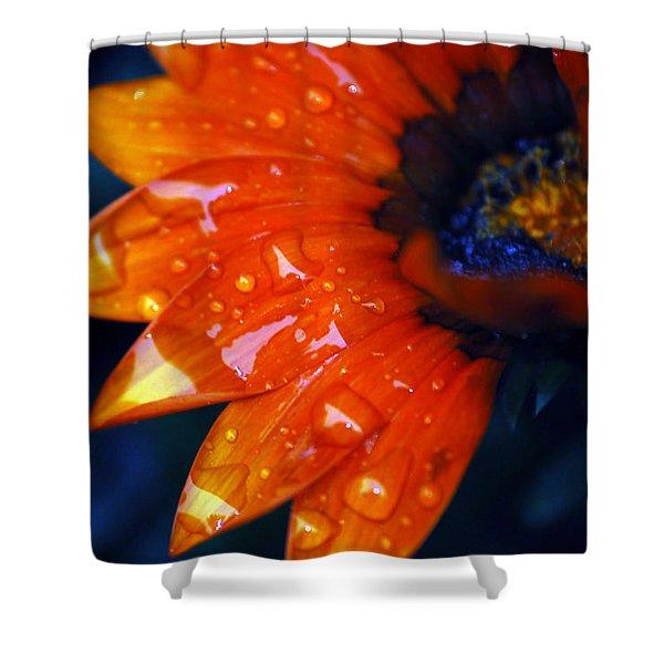 Wet Petals Shower Curtain