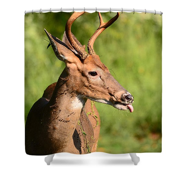 What A Mess Shower Curtain