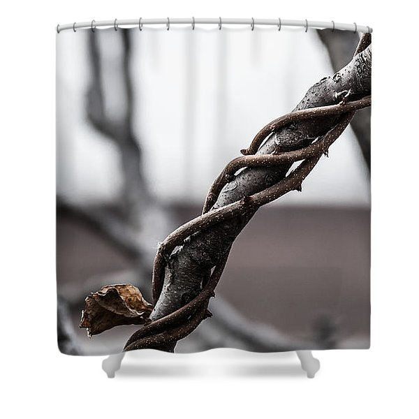 What A Twist Shower Curtain