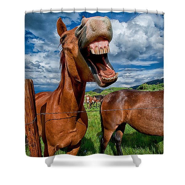 What's So Funny Shower Curtain