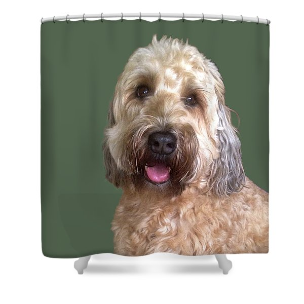 Wheaton Terrier Shower Curtain