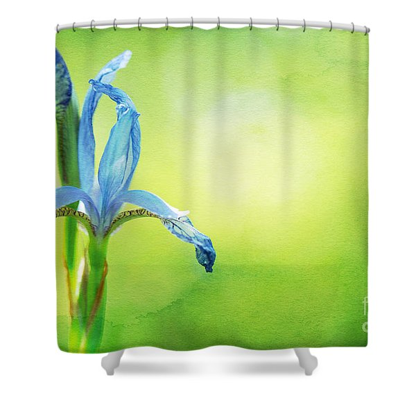 When In Doubt Shower Curtain