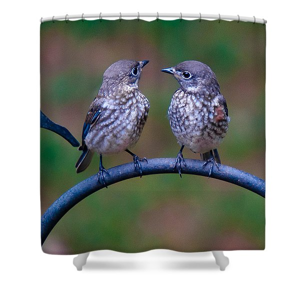 When's Dad Coming Back? Shower Curtain