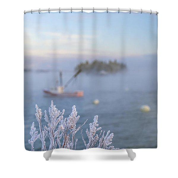 Where Morning Glories Grow Shower Curtain