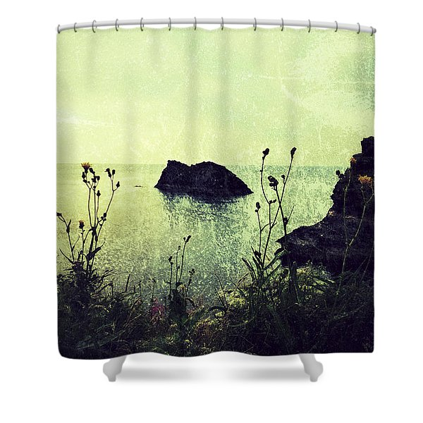 Where There Be Wilde Things  Shower Curtain