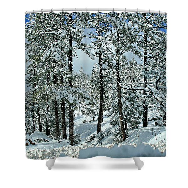 Whispering Snow Shower Curtain