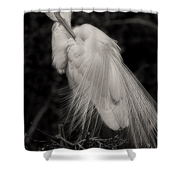 Whispy And Delicate Shower Curtain