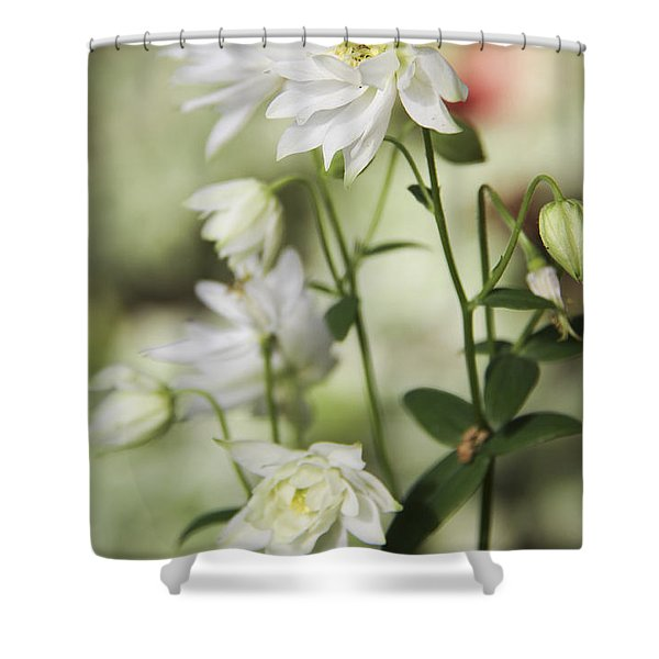 White Frilly Columbines Shower Curtain