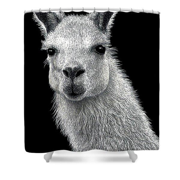 White Llama Shower Curtain