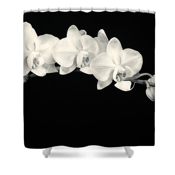 White Orchids Monochrome Shower Curtain