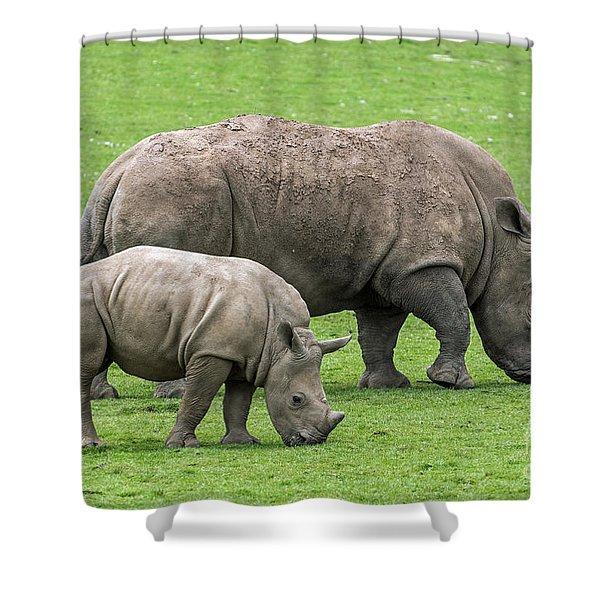 White Rhino 8 Shower Curtain